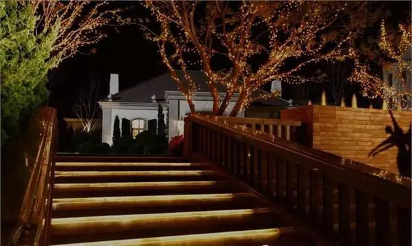 The lighting of the trees (2)